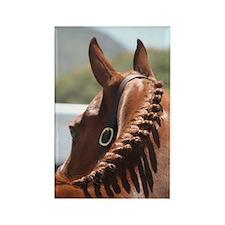 Braided Horse Refrigerator Magnet