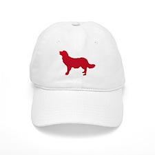 Stabyhoun Baseball Cap