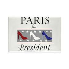 Patriotic Paris Rectangle Magnet