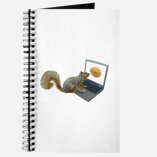 Squirrel at Computer Journal