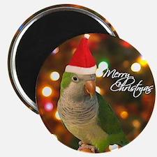 Merry Christmas Santa Quaker Parakeet Magnet