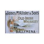 Ballymena (McAllister's) Magnets (10 pack)