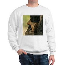 Squirrel tote Sweatshirt