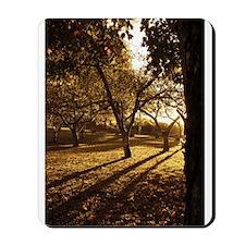 Orchard Sunset Mousepad