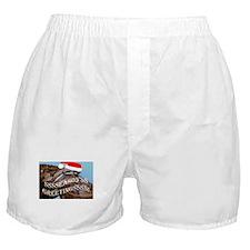Santa Snake Boxer Shorts