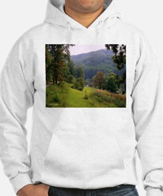 Fall in the Valley Hoodie