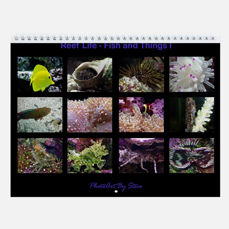 Fish and Things I Wall Calendar