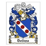 Doliwa Family Crest Small Poster