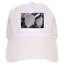 Unique Aspen leaf Baseball Cap