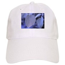 Cool Aspen leaf Baseball Cap