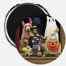 Trick Or Treats Magnet