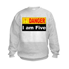 Danger! 5 year old at work Sweatshirt