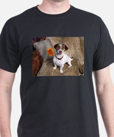 Jack Russel Baby T-Shirt
