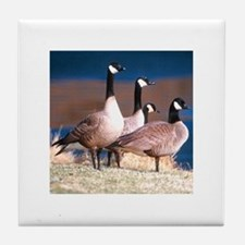 Canada Geese Tile Coaster