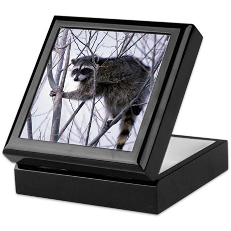 Rascally Raccoon Keepsake Box