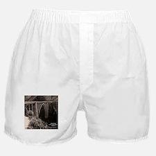 Bixby Bridge Boxer Shorts