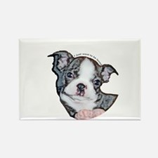 Boston Terrier Puppy Rectangle Magnet