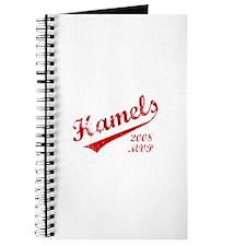 Hamels 2008 MVP Journal