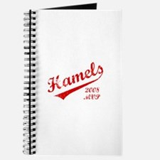 Hamels 2008 MVP Journal