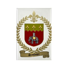 SAULNIER Family Crest Rectangle Magnet (10 pack)
