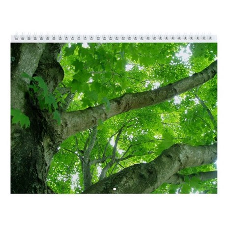 Virginia Trees Wall Calendar
