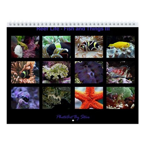 fish and things iii wall calendar by allenphotoart