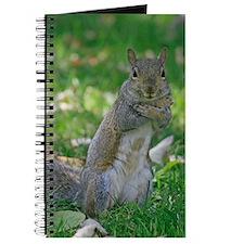 Hugs Grey Squirrel Wildlife Journal