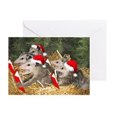 Wildlife Christmas Cards Greeting Cards (Pk of 20)