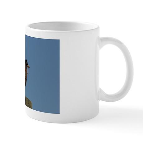 American Robin Mug