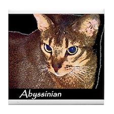 Cute Abyssinian cat Tile Coaster