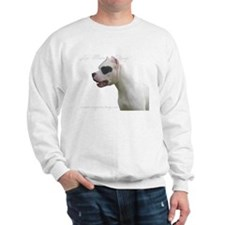 Cool Argentino Sweatshirt