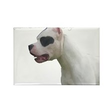 Cute Argentine dogo Rectangle Magnet (100 pack)