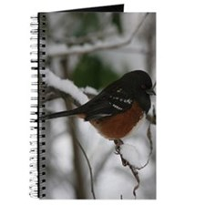 Spotted Towhee Journal