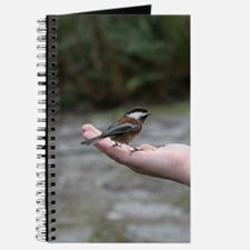 Chestnut-backed Chickadee Journal