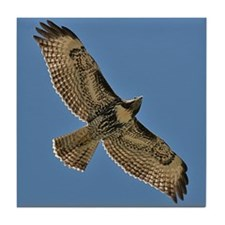 Red-Tailed Hawk Tile Coaster