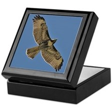 Red-Tailed Hawk Keepsake Box