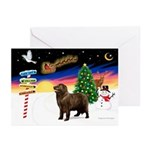 XmasSigns/Newfie Greeting Cards (Pk of 10)