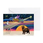 XmasStar/ Newfie Greeting Cards (Pk of 20)