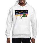 XmasSigns/BorderCollie 4 Hooded Sweatshirt