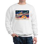XmasStar/Border Collie Sweatshirt