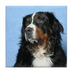 Berner Tile Coaster