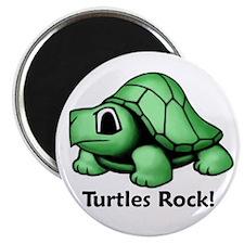 Turtles Rock! Magnet