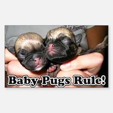 Baby Pugs Rule! Rectangle Decal