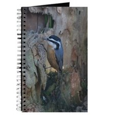 Red-Breasted Nuthatch Journal