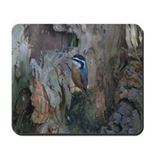 Red-Breasted Nuthatch Mousepad
