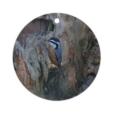 Red-Breasted Nuthatch Ornament (Round)