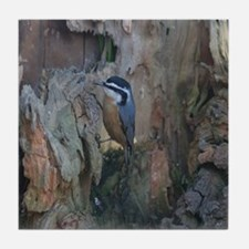 Red-Breasted Nuthatch Tile Coaster