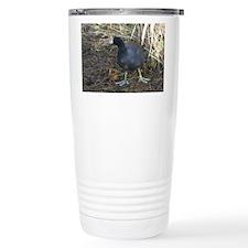 American Coot Travel Mug