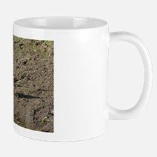 Killdeer Mug