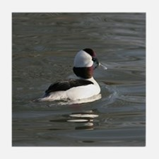 Bufflehead Tile Coaster
